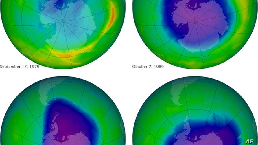 This undated image provided by NASA shows the ozone layer over the years, Sept. 17, 1979, top left, Oct. 7, 1989, top right, Oct. 9, 2006, lower left, and Oct. 1, 2010, lower right.