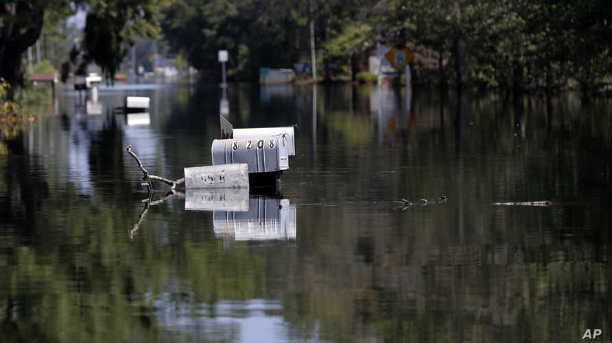 Rows of mailbox protrude through floodwaters in the aftermath of Hurricane Florence in Nichols, South Carolina, Sept. 21, 2018.