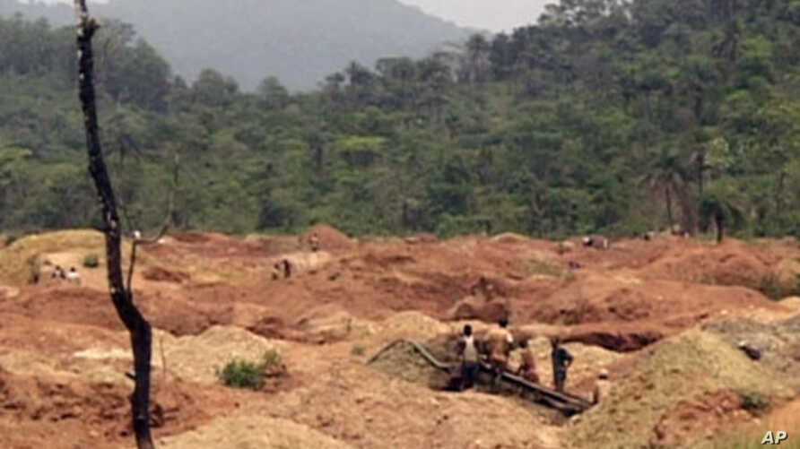 Hundreds of artisanal miners sift the gold-rich mud in open pits in Baomahun, southern Sierra Leone