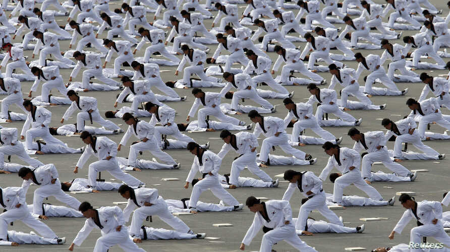 Members of the Special Warfare Command demonstrate the traditional Korean martial art of taekwondo during celebrations to mark the 65th anniversary of Korea Armed Forces Day, Seongnam, Oct. 1, 2013.