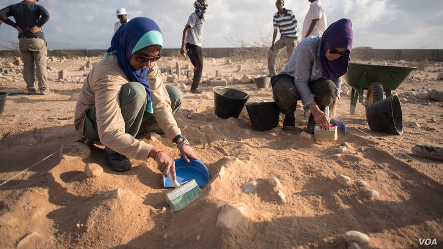 Forensic investigators brush away soil from the top of a mass grave containing 17 bodies buried nearly 30 years ago in Berbera, Somaliland. (J. Patinkin/VOA)