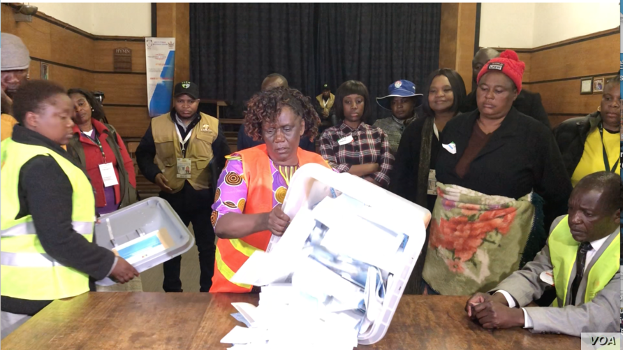 Zimbabwe Electoral Commission start vote counting in Harare after the July 30 elections which the main opposition party Movement for Democratic Change Alliance say was rigged for the ruling ZANU-PF party.