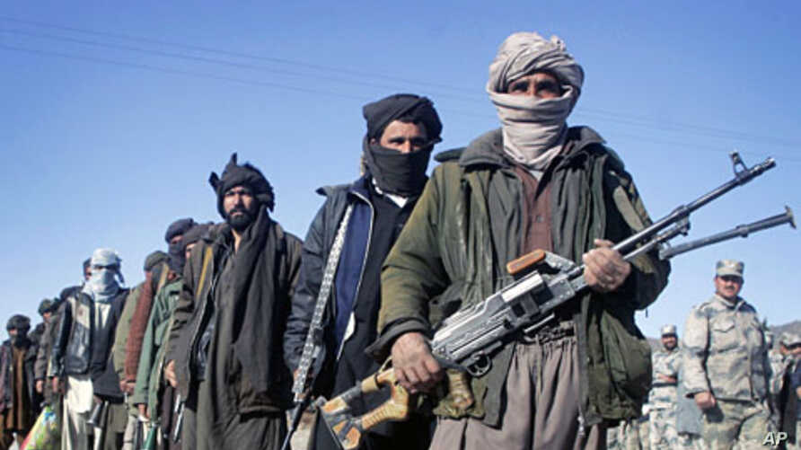 Former Taliban militants hold their weapons during a joining ceremony with the Afghan government in Herat, west of Kabul, January 30, 2012.