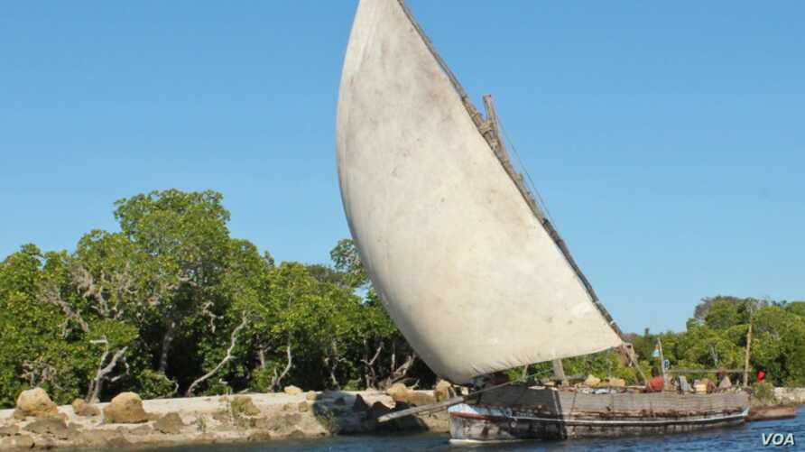 Lamu's fishermen fish the traditional way, using small wooden dhows, which they say cannot handle the rough conditions of the open sea. November 25, 2014. (Hilary Heuler / VOA News)