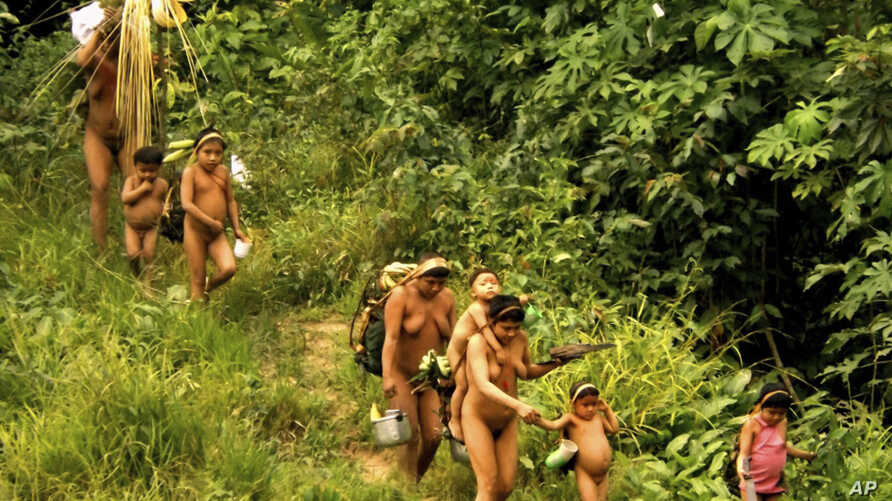 In this undated 2014 handout photo released by Brazil's National Indian Foundation, FUNAI, members of the Korubo tribe walk along a path in the Javari Valley, in the northern state of Amazonas, Brazil.