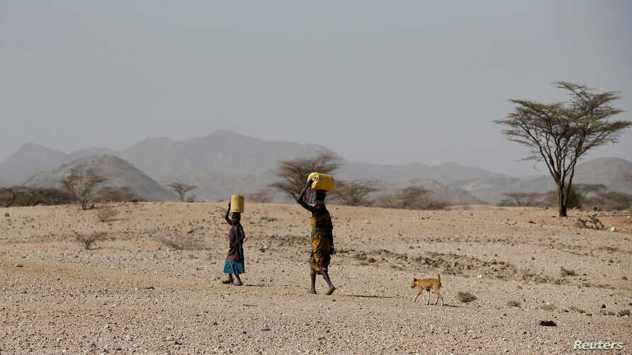 Turkana people carry water near Lodwar, in Turkana County, Kenya, Feb. 7, 2018.