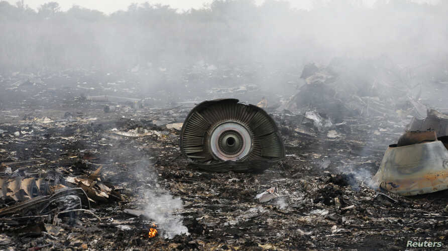 The site of a Malaysia Airlines Boeing 777 plane crash is seen near the settlement of Grabovo in the Donetsk region, July 17, 2014.