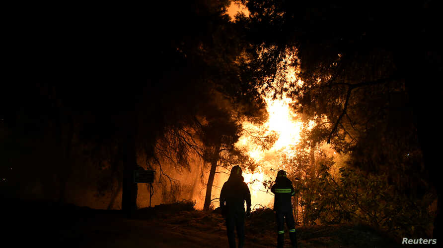 Firefighters looks at rising flames during a wildfire near the village of Psahna, in Evia, Greece, August 12, 2018.