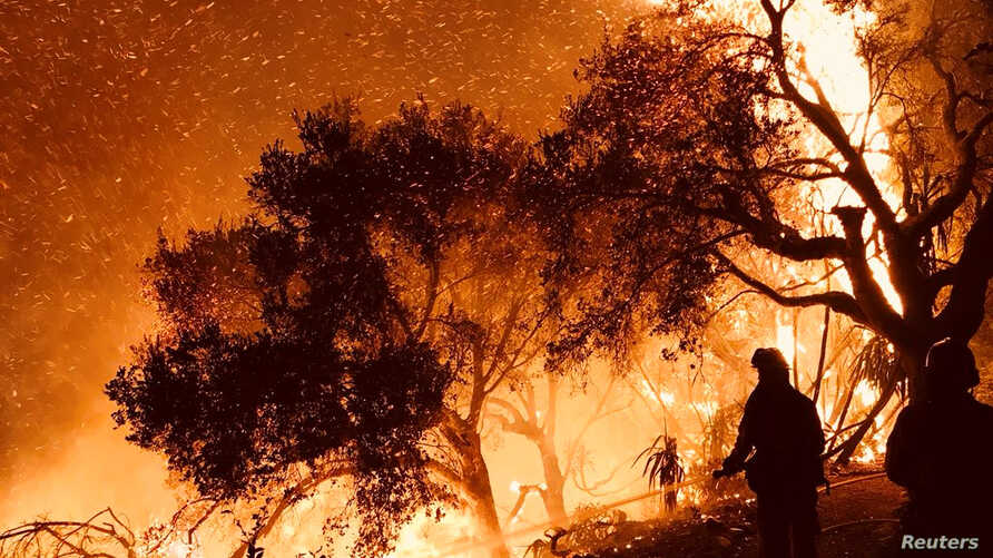 Firefighters knock down flames as they advance on homes atop Shepherd Mesa Road in Carpinteria, California, Dec. 10, 2017. (Santa Barbara County Fire Department/Handout via Reuters)