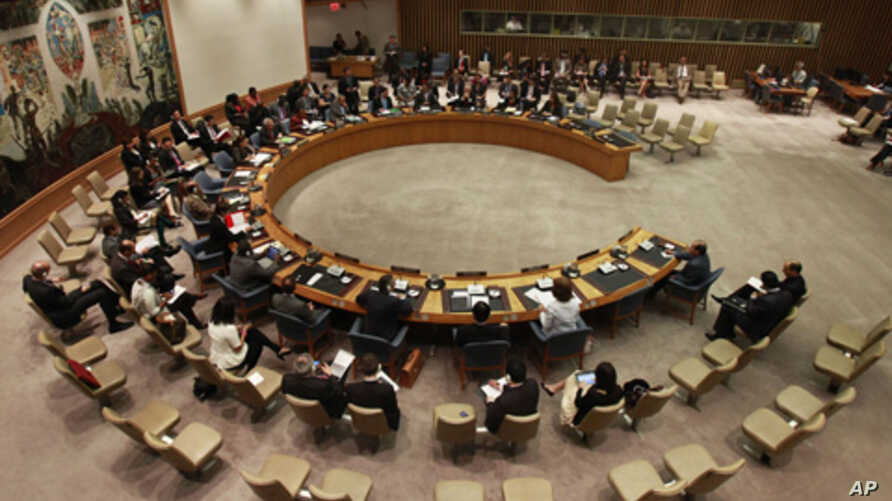 U.N. Security Council (2011 file photo)