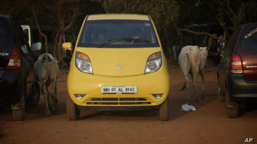 Vanessa Able's Tata Nano, which she drove across India, is passed by cattle in the road.