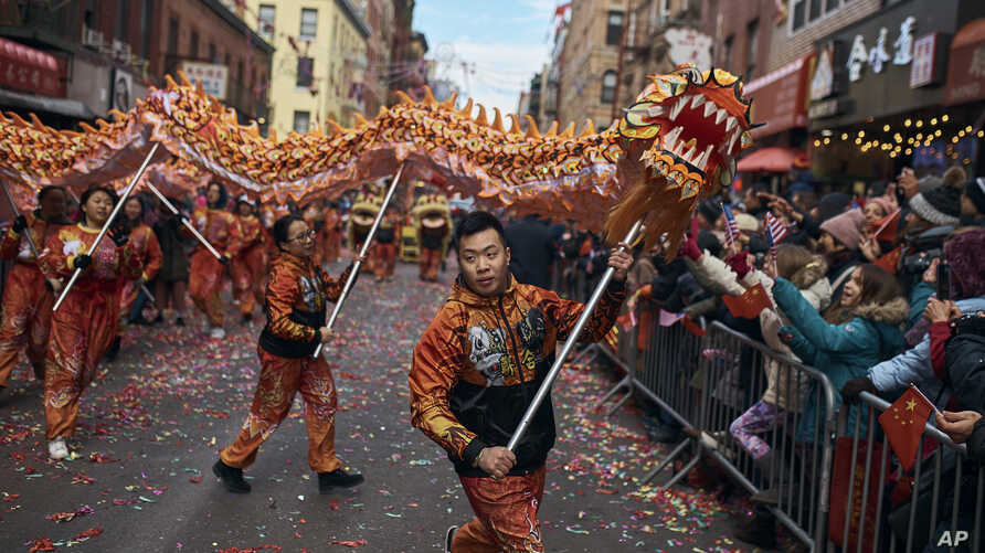A member of a dragon dance group carries the head of the dragon during the Chinese Lunar New Year parade in Chinatown in New York, Sunday, Feb. 17, 2019.