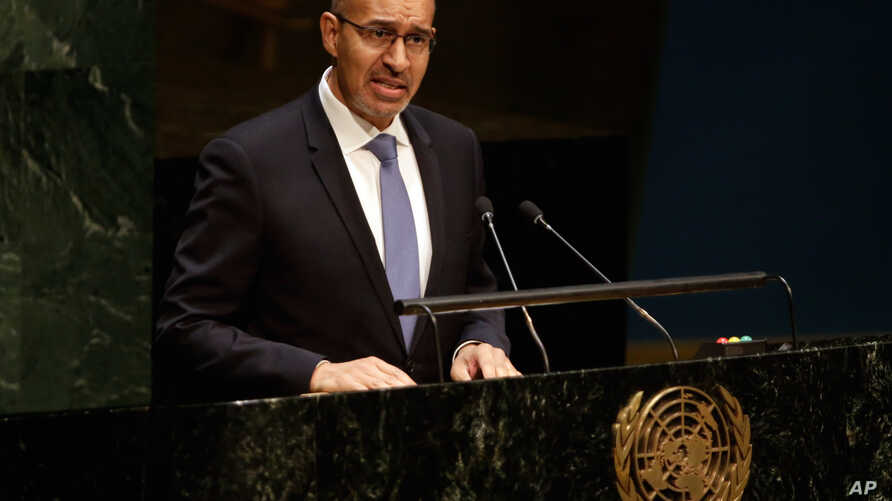 Harlem Desir, France's state secretary for European affairs, addresses the U.N. General Assembly, Jan. 22, 2015.
