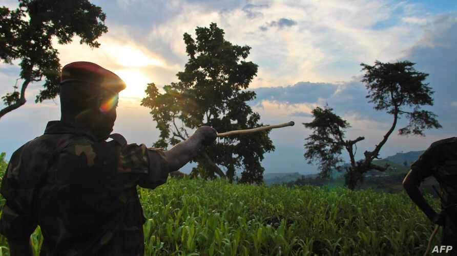 FILE - A soldier points to the limits of rebel-held territory from the Kavumu hill in North Kivu, eastern Democratic Republic of the Congo, June 3, 2012.