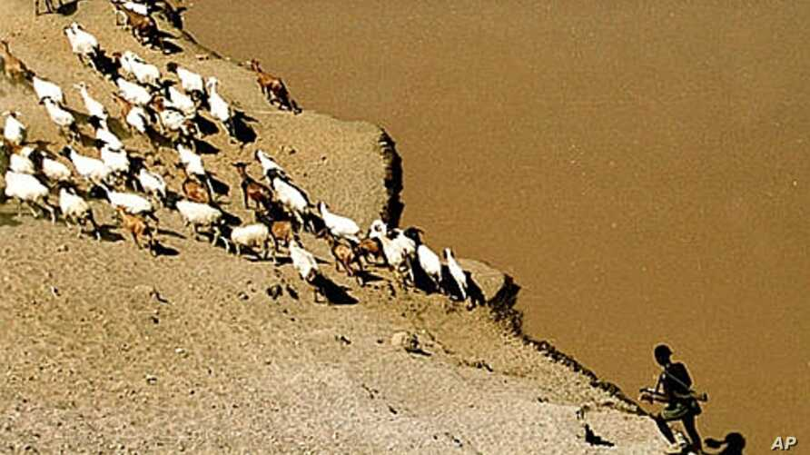 Karo tribesman wears a gun as he guards his goats on the bank of the River Omo, April 2002 (file photo).
