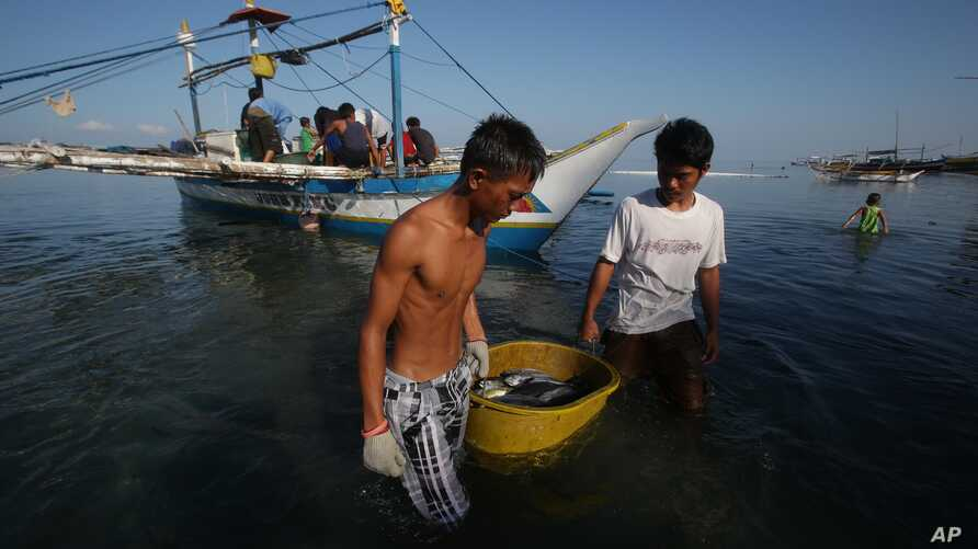 FILE - Filipino fishermen bring their fish to shore in the coastal town of Infanta, Pangasinan province, northwestern Philippines.