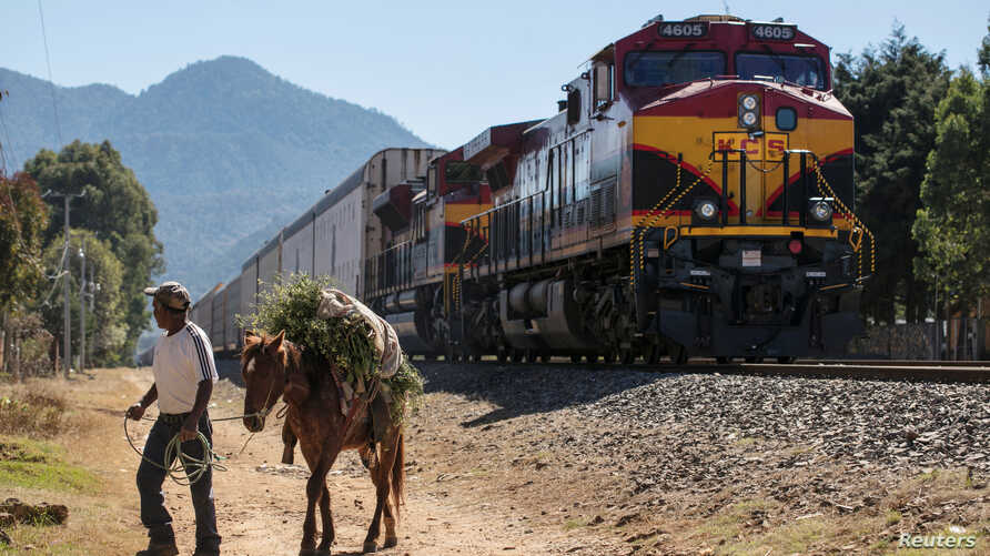 A man pulls his horse past a train stopped by a blockade of members of the National Coordination of Education Workers (CNTE) teachers' union in Patzcuaro, in Michoacan state, Mexico, Jan. 26, 2019.