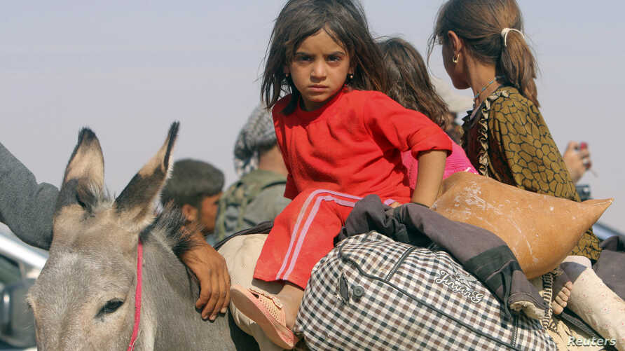 Displaced children from the minority Yazidi sect, fleeing violence from forces loyal to the Islamic State in Sinjar town, ride on a donkey as they head towards the Syrian border, on the outskirts of Sinjar mountain, near the Syrian border town of Eli