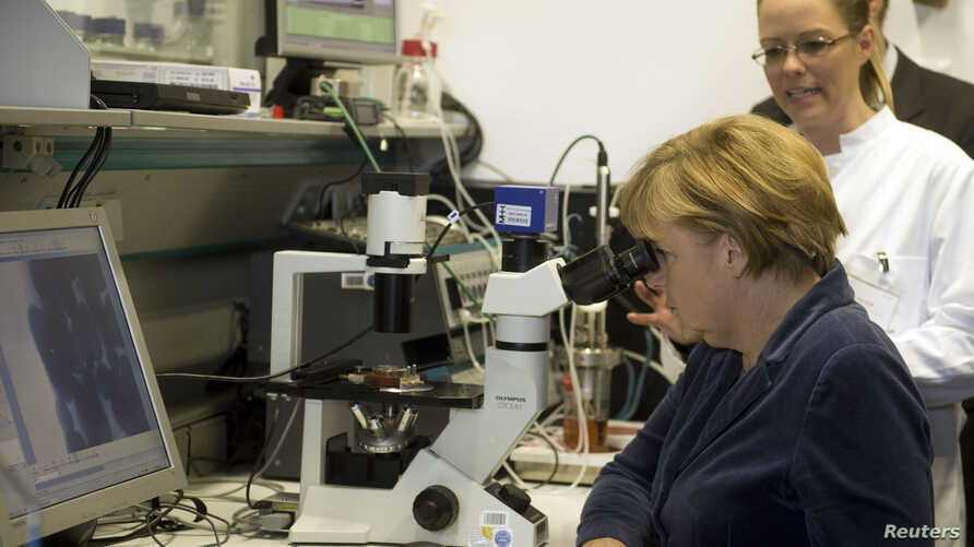 FILE - German Chancellor Angela Merkel looks through a microscope at stem cells that have been bred to grow heart muscle cells, during her visit to the MHH medical university in Hanover, Nov. 27, 2012.