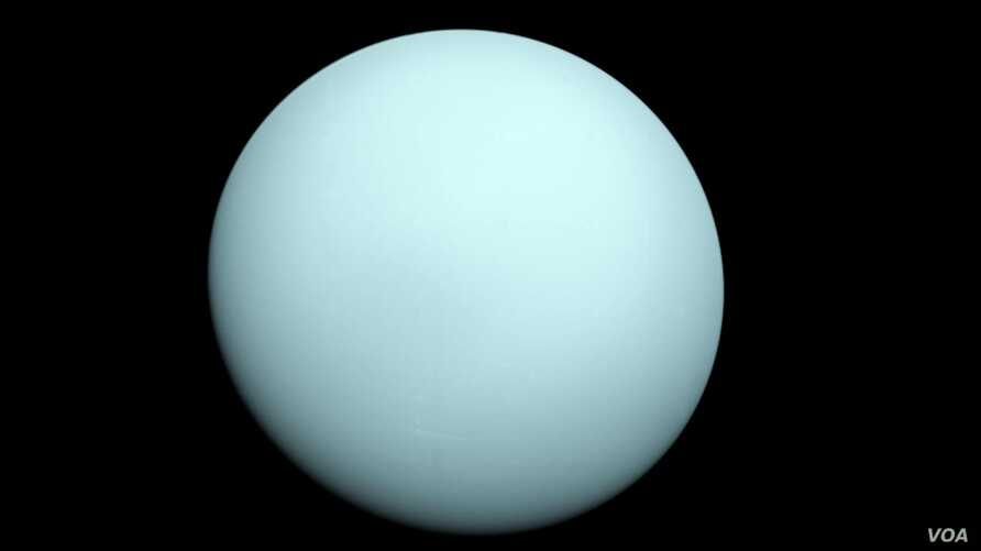 FILE - Arriving at Uranus in 1986, Voyager 2 observed a bluish orb with extremely subtle features. A haze layer hid most of the planet's cloud features from view. (NASA/JPL-Caltech)