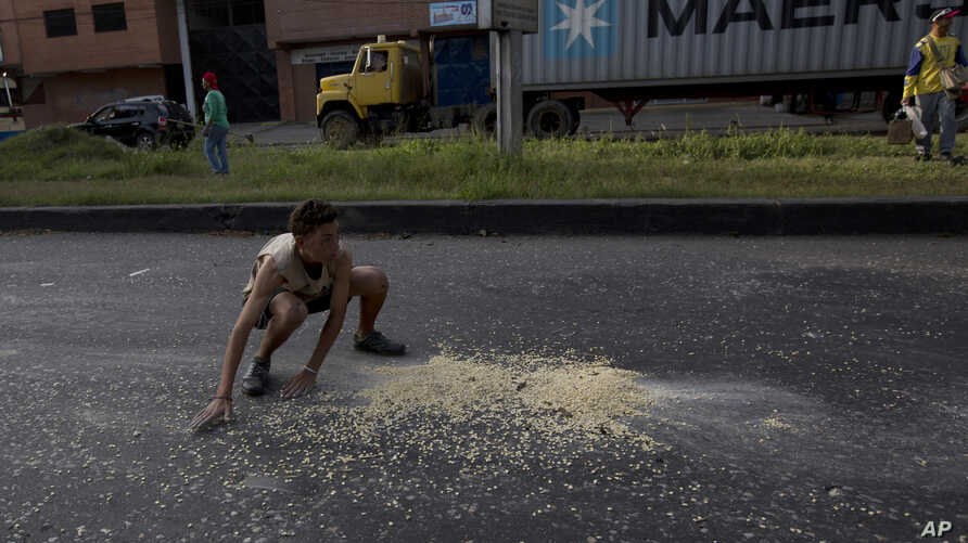 In this Jan. 23, 2018 photo, a youth moves quickly to collect grains of corn on the street that fell from a truck that was looted outside the port in Puerto Cabello, Venezuela.