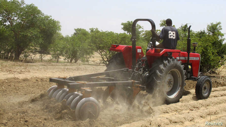 FILE - A farmer plows the field in Saulawa village, on the outskirts of Nigeria's north-central state of Kaduna.