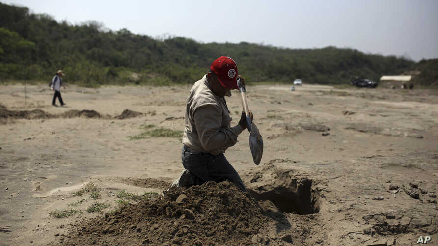 FILE - A volunteer searcher digs into the earth at a clandestine gravesite in Colinas de Santa Fe, in Mexico's Veracruz state, March 30, 2017. The Mexican government's human rights agency says tens of thousands of people have been recorded as missing
