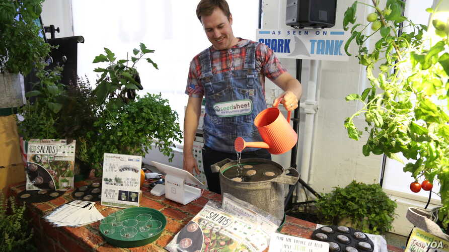 Cam MacKugler waters a seedsheet at the Food Loves Tech event in Brooklyn, Nov. 3, 2017. (T. Trinh/VOA)