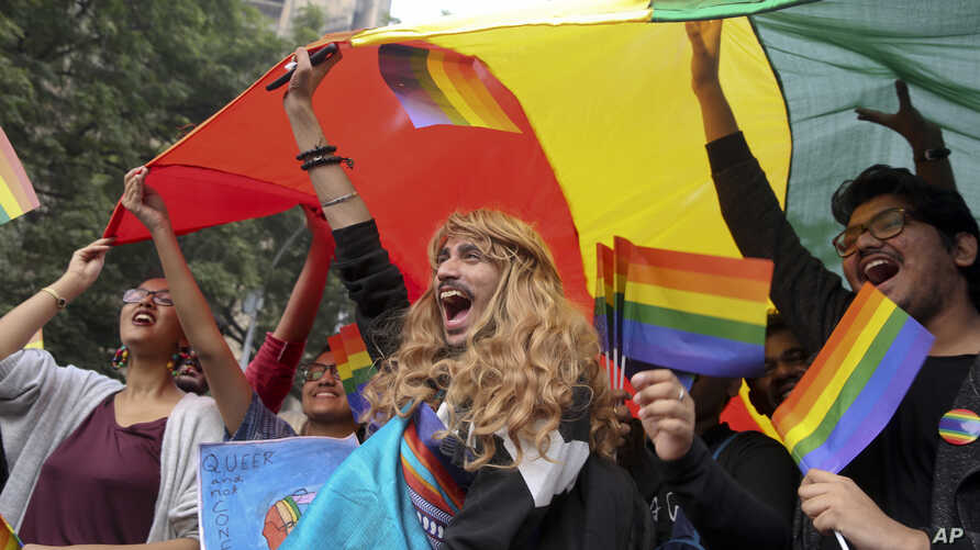 Participants displays a rainbow flag and cheer as gay rights activists and their supporters march during a gay pride parade in New Delhi, India,  Nov. 12, 2017.