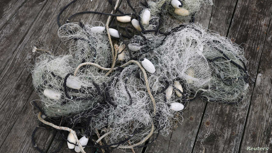 Fishing nets lie at a dock in Wanchese, North Carolina, May 30 2017.