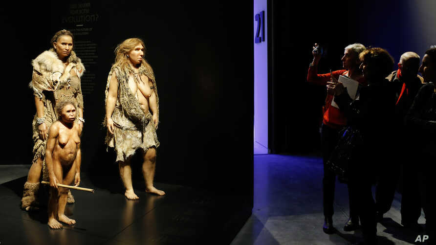 """FILE - Visitors take pictures of models representing Flores, human and Neanderthal women in the """"Musee des Confluences,"""" a new science and anthropology museum in Lyon, central France, Dec. 18, 2014. Neanderthals had a long run in Europe, but disappea"""