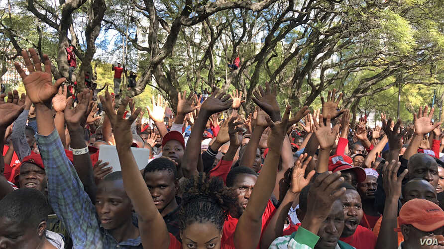 Members of the Movement for Democratic Change led by their leader Nelson Chamisarally, rally in Harare, Zimbabwe, July 11, 2018.
