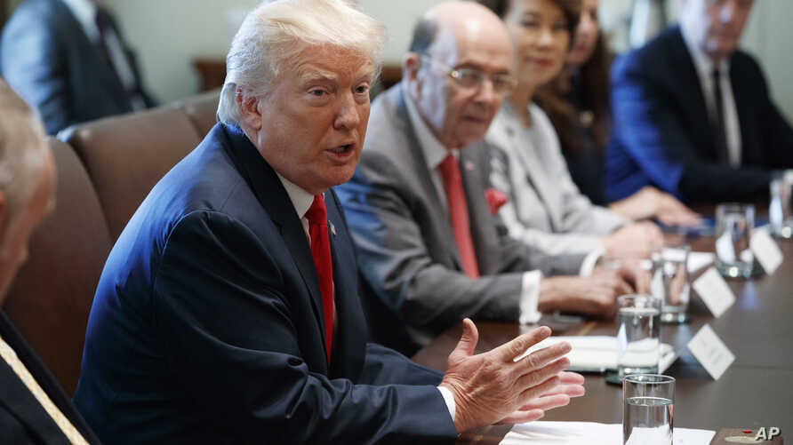 President Donald Trump speaks during a cabinet meeting in the Cabinet Room of the White House, July 31, 2017, in Washington.