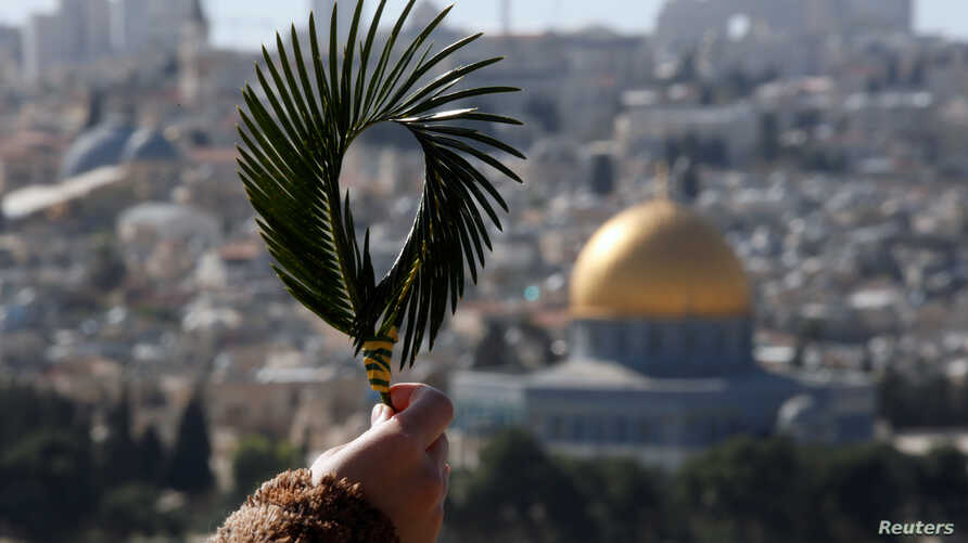 A Catholic faithful holds palm fronds during a Palm Sunday procession on the Mount of Olives in Jerusalem, March 25, 2018.
