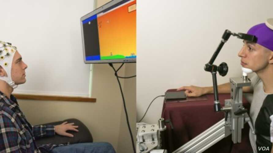 UW students Darby Losey, left, and Jose Ceballos are positioned in two different buildings on campus as they would be during a brain-to-brain interface demonstration. The sender, left, thinks about firing a cannon at various points throughout a comp