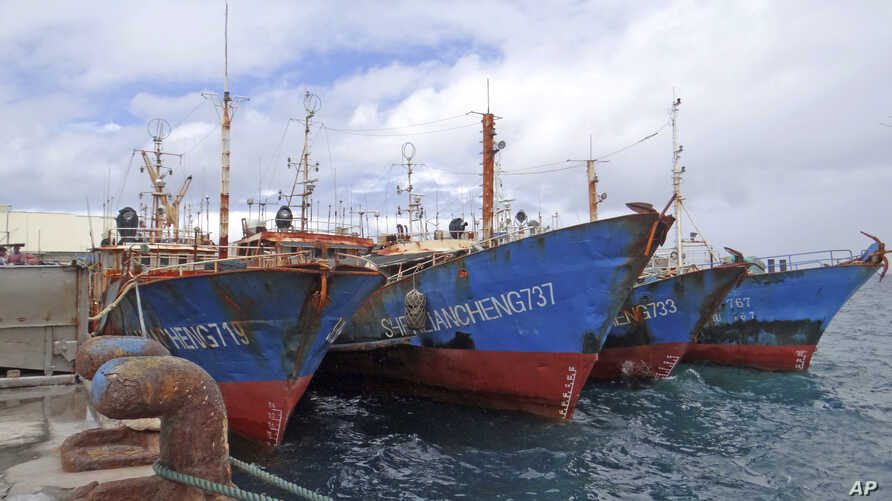 FILE - Luen Thai Fishing Venture boats are docked at the Majuro port in the Marshall Islands on Feb. 1, 2018. Luen Thai is one of the companies that was supplying fish that entered the supply chain of Sea To Table.