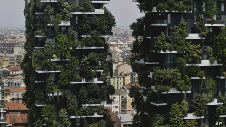 """The twin towers of the Bosco Verticale (Vertical Forest) residential buildings at the Porta Nuova district rise above Milan, Italy, on Aug. 3, 2017. Designed by the Boeri studio, it was named """"2015 Best Tall Building Worldwide"""" by the Council on Tall"""