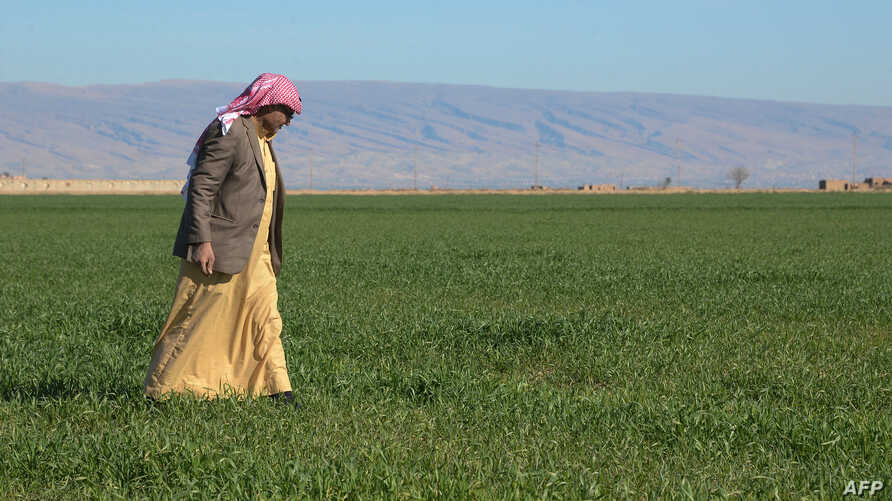 Mahdi Abu Enad, a Sunni Arab farmer, walks in a field in the northern Iraqi town of Sinjar, Feb. 5, 2019.