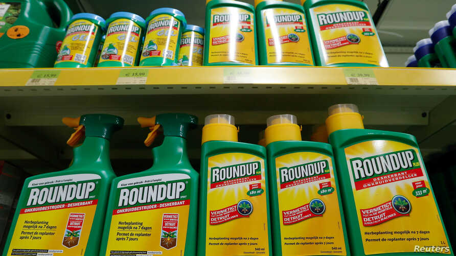 Monsanto's Roundup weedkiller atomizers are displayed for sale at a garden shop near Brussels, Nov. 27, 2017.