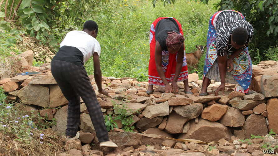 Beneficiaries of WFP's Resilent Program in Zomba, Malawi, constructing blockades across rivers to help trap water runoffs during flooding.
