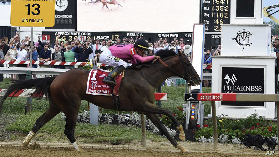 War of Will, ridden by Tyler Gaffalione, crosses the finish line first to win the Preakness Stakes at Pimlico Race Course, May 18, 2019, in Baltimore.