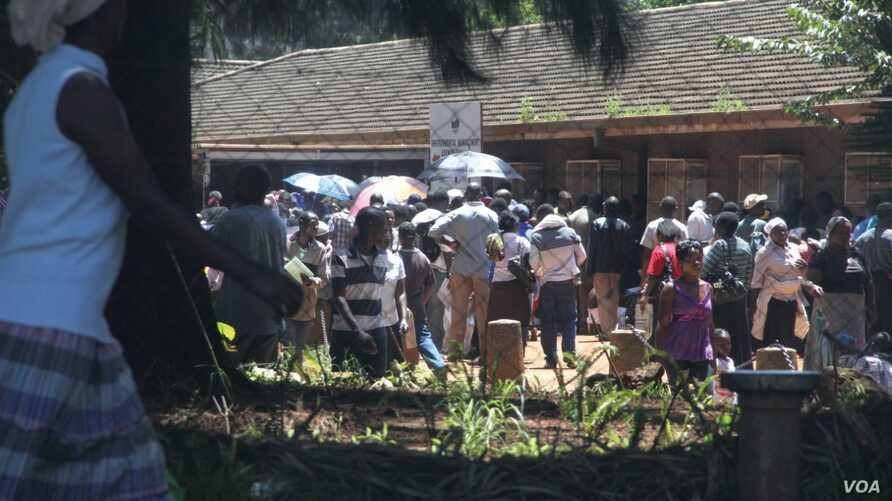 Chaos reigns outside Zimbabwe's registrar general's office in Harare