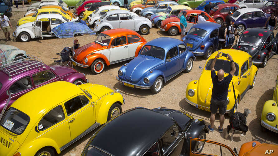 """FILE - Volkswagen Beetles are displayed during the annual gathering of the """"Beetle club"""" in Yakum, central Israel, April 21, 2017."""