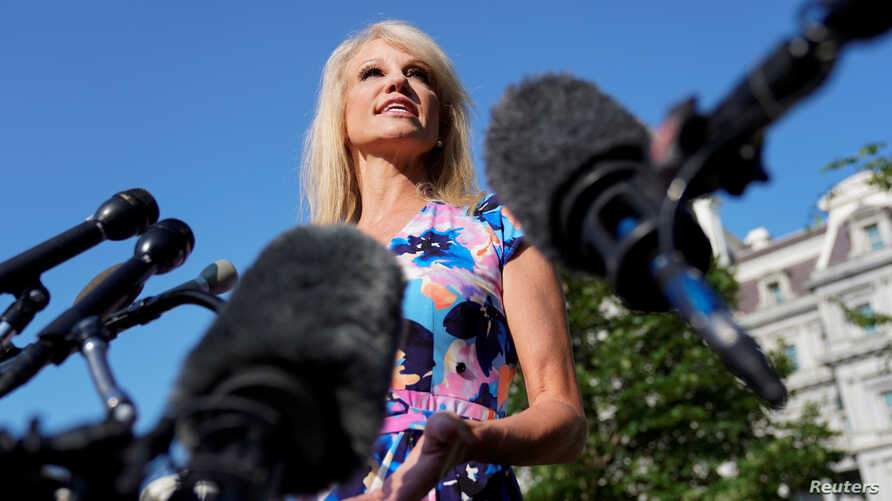 White House adviser Kellyanne Conway speaks to reporters at the White House in Washington, July 9, 2019.