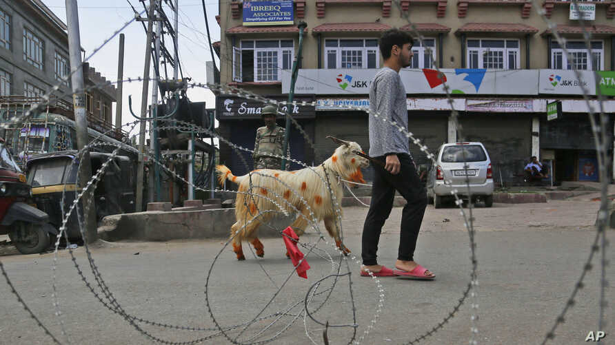 A Kashmiri Muslim civilian crosses a check point ahead of Eid -ul Adha during curfew in Srinagar, Indian-controlled Kashmiri, Aug. 9, 2019.