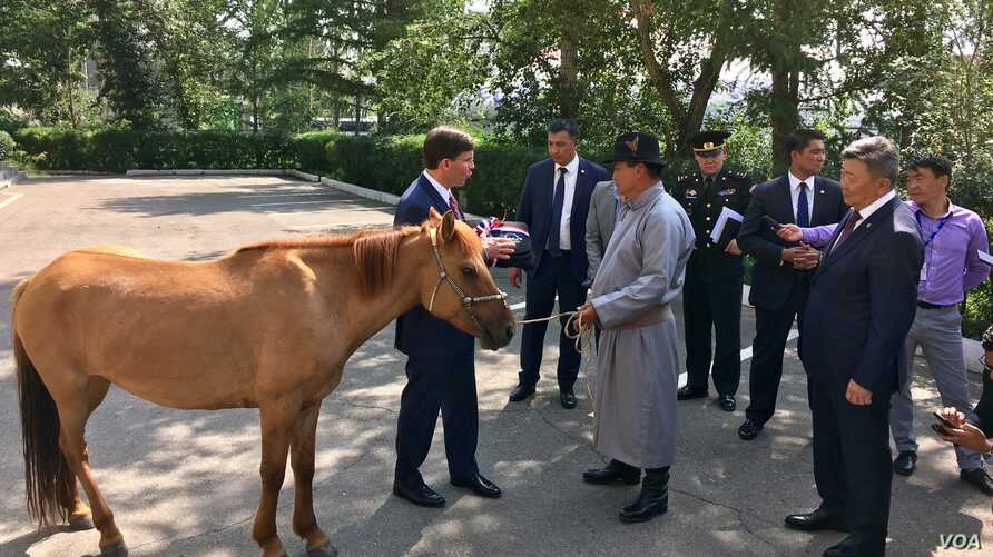 Mongolian Defense Minister Nyamaa Enkhbold, right, presents a horse as a gift to U.S. Defense Secretary Mark Esper at the Defense Ministry in Ulaanbaatar, Mongolia, Aug. 8, 2019.  (C. Babb/VOA)