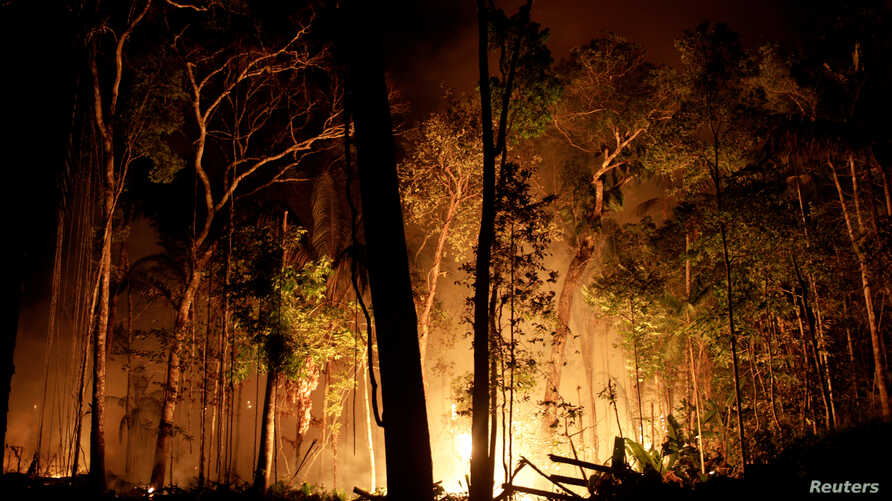 A fire burns a tract of Amazon jungle as it is cleared by loggers and farmers near Porto Velho, Brazil, Aug. 31, 2019.