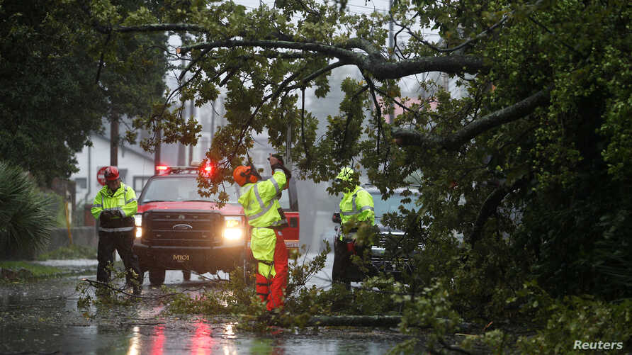 Crews with the Charleston Fire Department clear a fallen tree during Hurricane Dorian in Charleston, South Carolina, Sept. 5, 2019.