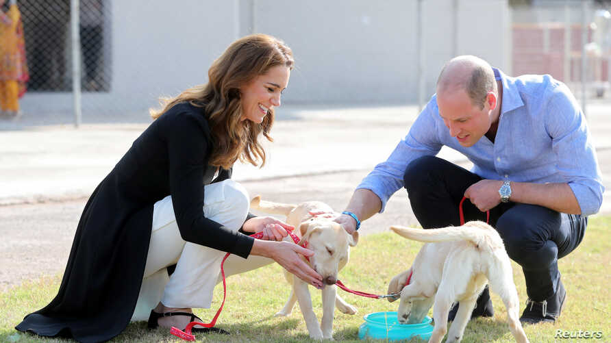 Catherine, Duchess of Cambridge and Prince William, Duke of Cambridge, play with golden labrador puppies Salto and Sky as they…