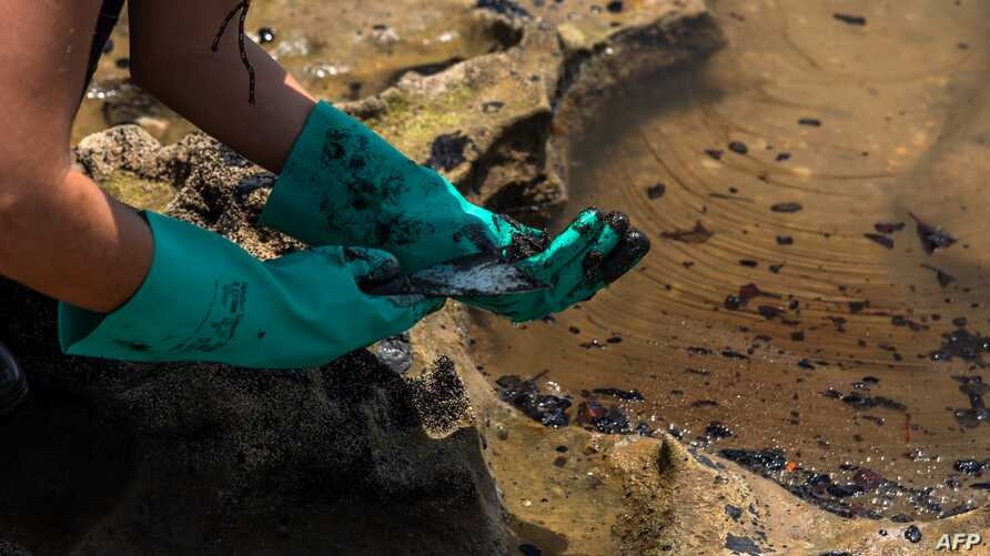 A volunteer removes crude oil spilled at the Pocas beach, municipality of Conde, Bahia state, Brazil, Oct. 27, 2019.